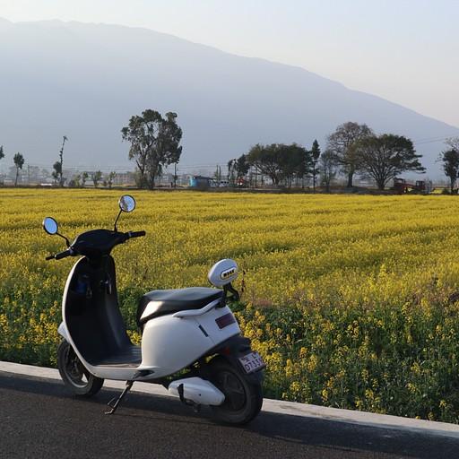 האופנוע החשמלי על רקע שדות צהובים
