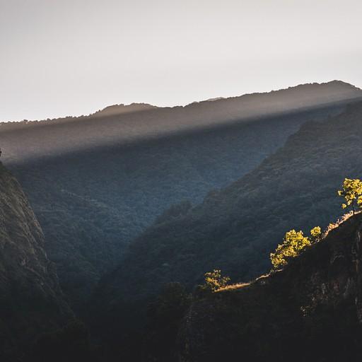 בוקר עולה על העמק