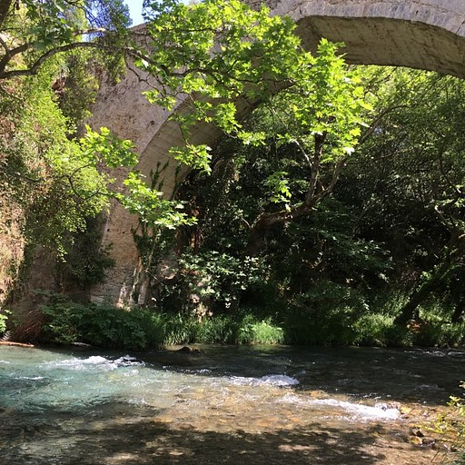 נקודת העצירה ליד הנהר.