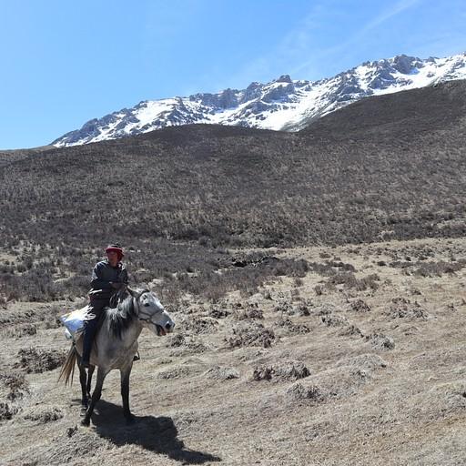 המדריך בטיול סוסים בלנגמוסה
