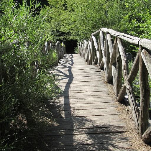 אחד מהגשרים במסלול