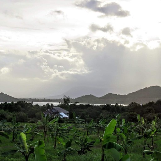 חוות הפלפלים והאגם הנסתר