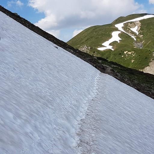 הליכה מאתגרת בשלג