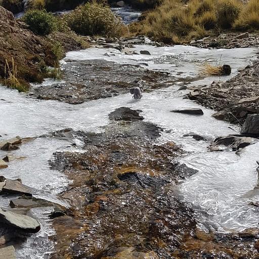 קרח ומים קרוב לפאס