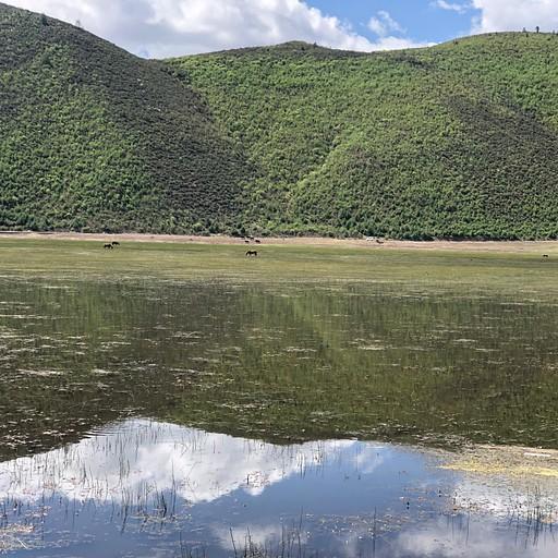 אגם נאפה
