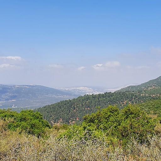 בדרך להר הלל