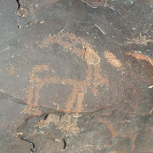 ציור סלע של יעל