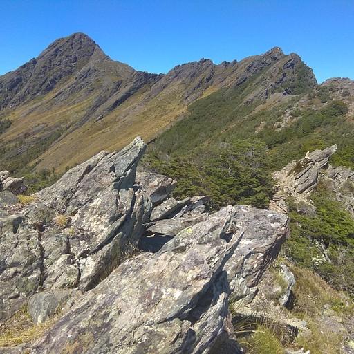 Kahurangi National Park. הכי אנרייטד בניו זילנד.