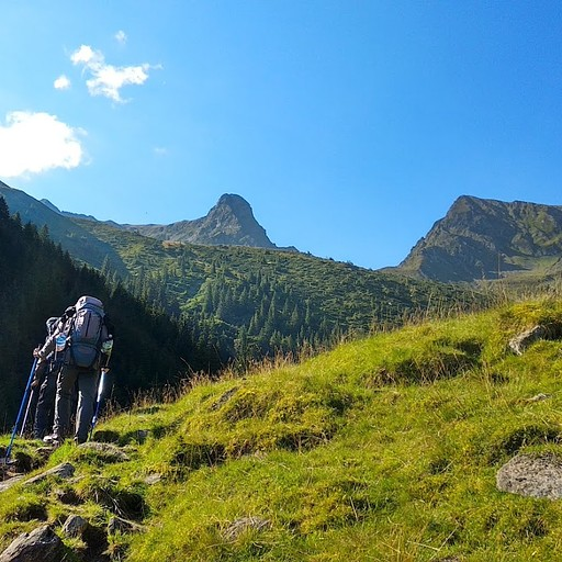 השביל להרים