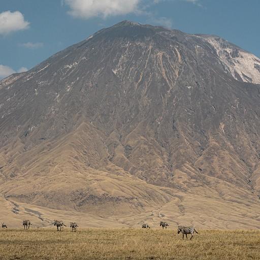 הר הגעש אול דויניו לנגאי וכמה זברות לצורך פרופורציה