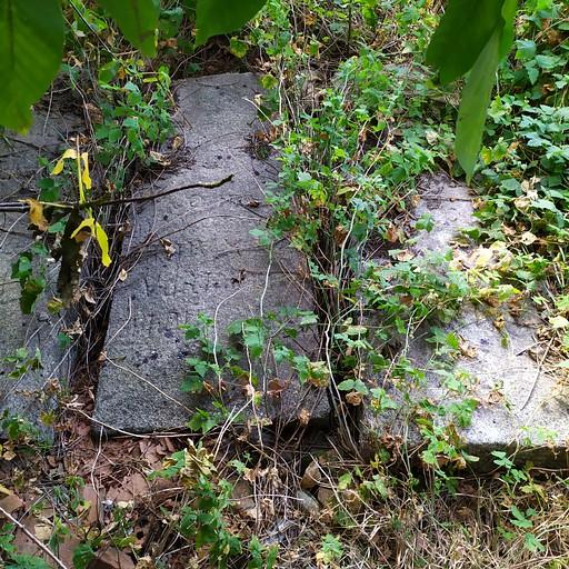 מצבות עתיקות בחצר בית כנסת העתיק בסמוקוב