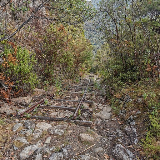 פסי רכבת ישנים ב- Billygoat Track