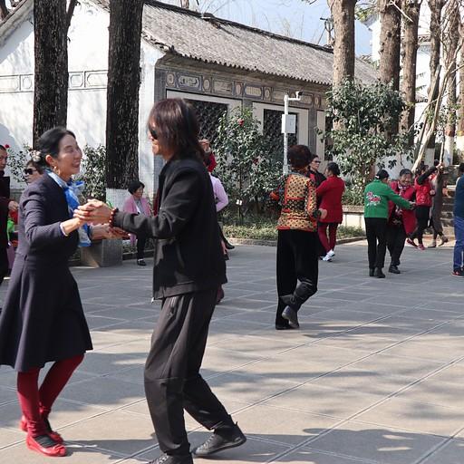 רוקדים בפארקים ברחבי דאלי