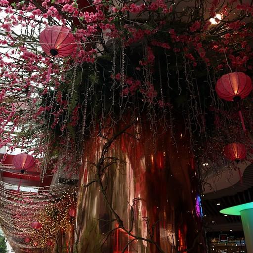 Orchard Road מלא פנסים סינים
