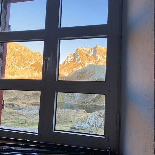 הנוף מהחלון בבקתה