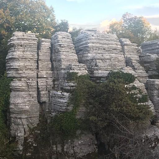יער האבנים