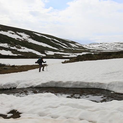 הולכים בשלג בסמוך לאגם