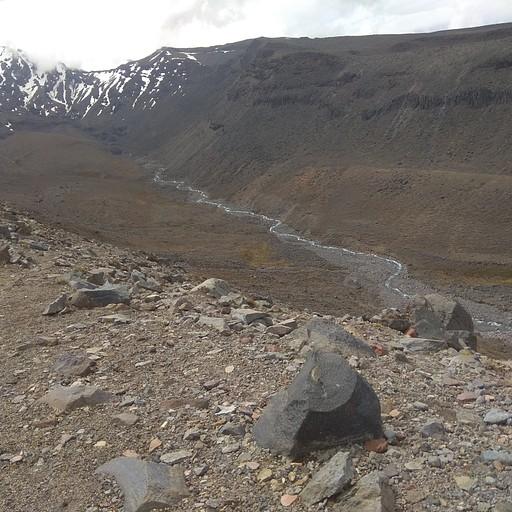נוף מהקטע המדברי בסובב ruapehu