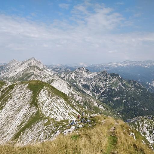 הנוף מVogel