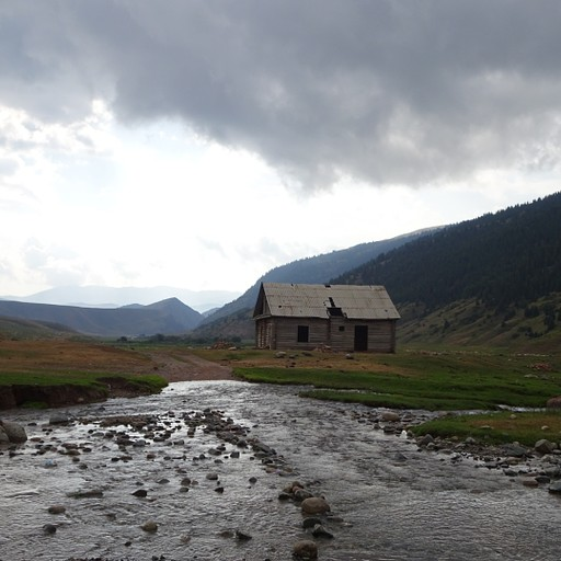 הבית עץ לאחר המעבר נחל הראשון