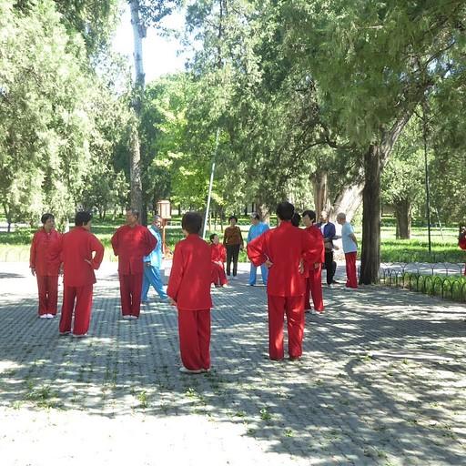 שיעור טאי צ'י בפארק
