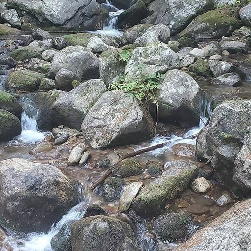 מעבר הנחל