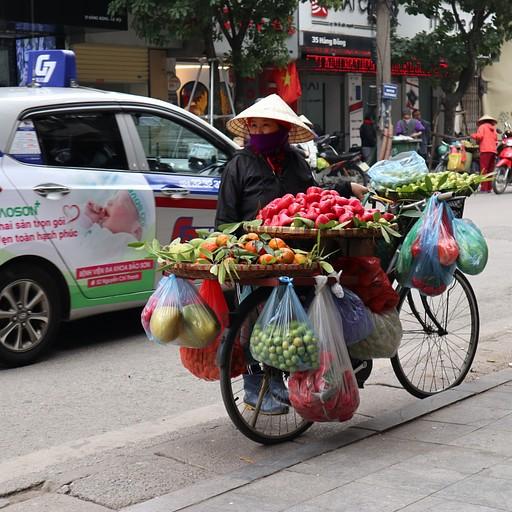 מוכרת פירות ברחובות האנוי