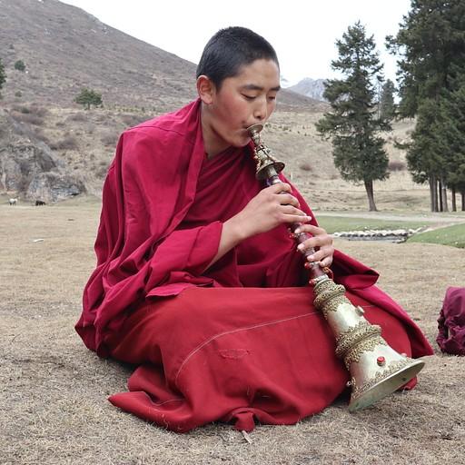 נזיר מתאמן בנגינה במנזר בצד הסצ'ואני