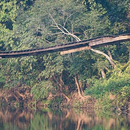 הגשר הכי מפחיד שהלכנו עליו בעולם! הכל בנוי על קורות עץ רקובות
