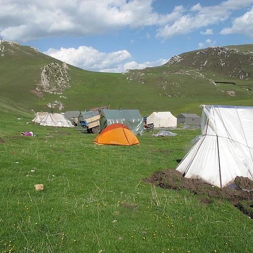 במחנה