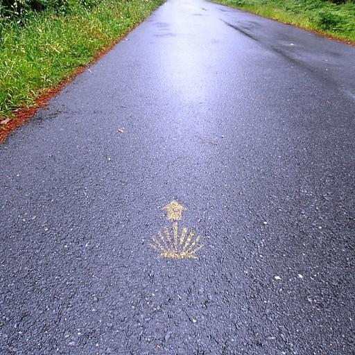 סמל הקמינו, הצדף, מסמן את הדרך