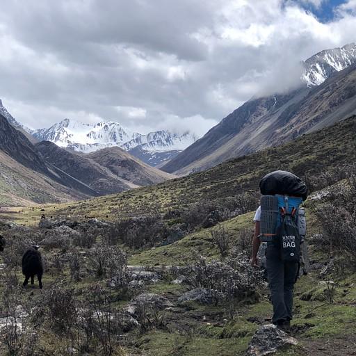 ההליכה בעמק