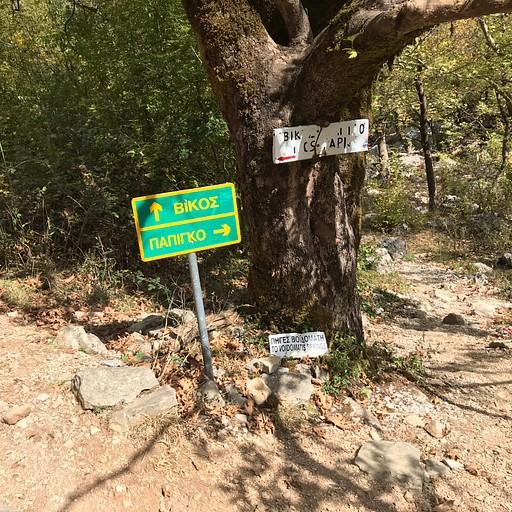 פיצול שבילים: שמאלה - הכפר ויקוס, ימינה - פפיגו