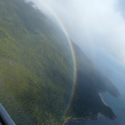 הנוף מהטיסה