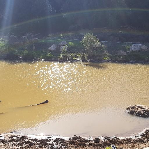 """""""האגם"""" בנחל אורן"""