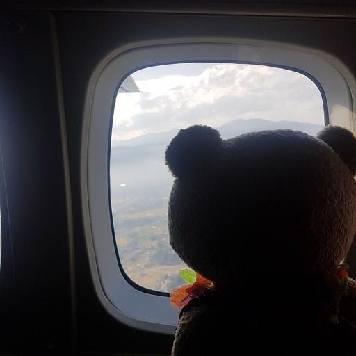 טד מתרגש בטיסה.