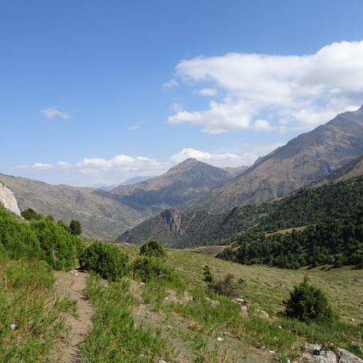 הנוף מShut pass