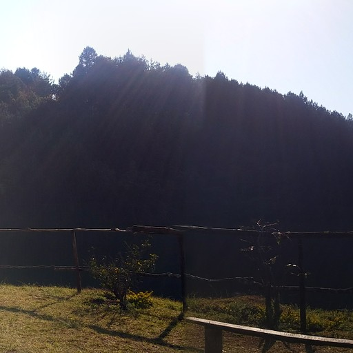mandala falls- אגם, מדשאה וספסלים במרחק הליכה קצרה מהקמפסייט
