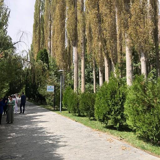 הפארק במרכז העיר