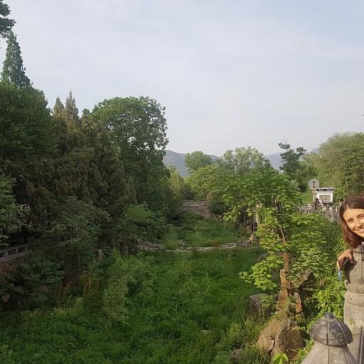 מעל הנחל שבין המקדש לעליה למלון