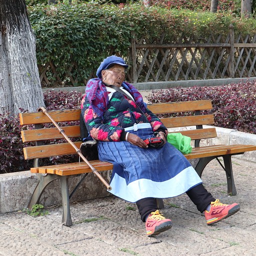 זקנה ישנה בפארק דרקון הג'ייד המושלג, הרדיו שהיא מחזיקה בידיים משמיע תפילה טיבטית