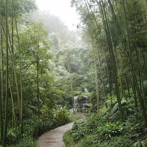 Wangyou Valley