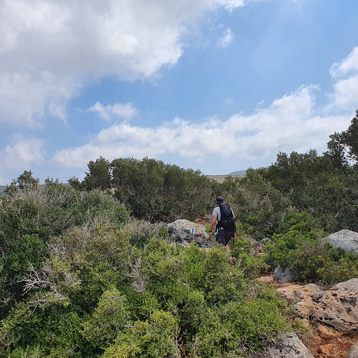 הדרך למערת ספונים