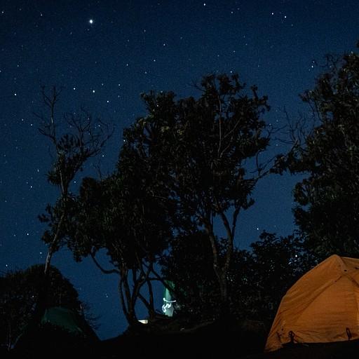 לילות בהירים ומלאי כוכבים. בחודשי הקיץ ניתן לראות את שביל החלב במלוא תפארתו