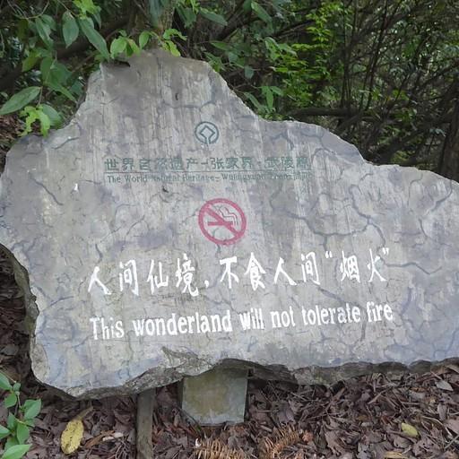 השלטים שיכוונו אותנו בפארק - נראה שחכם סיני עתיק כתב אותם