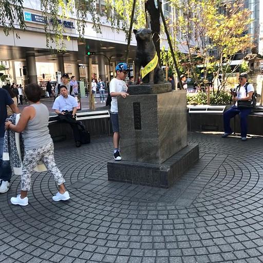 פסל של האצ'יקו