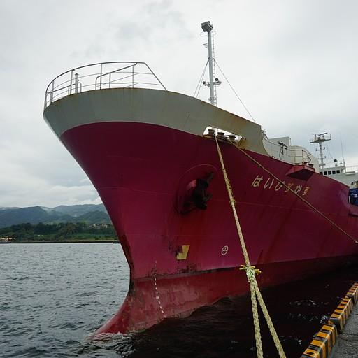 הספינה היביסקוס