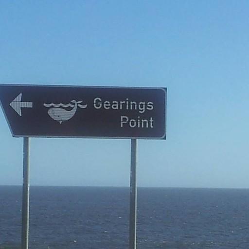 שלט מכווין למקום צפייה בלוויתנים