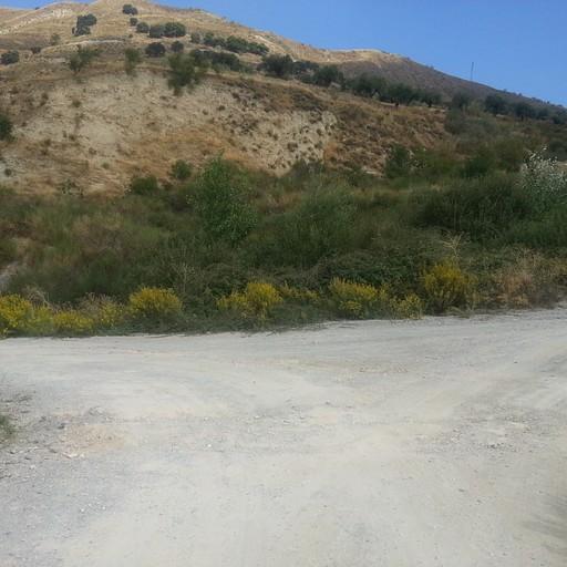 אחרי 50 מטרים, פה כבר לא היה שום סימון. לקחתי שמאלה לכיוון מונצ'יל