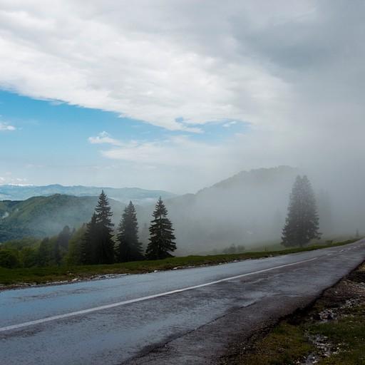 אל תתנו למזג אוויר להרתיע אתכם. יום שהתחיל חורפי נהפך ליפה במיוחד.